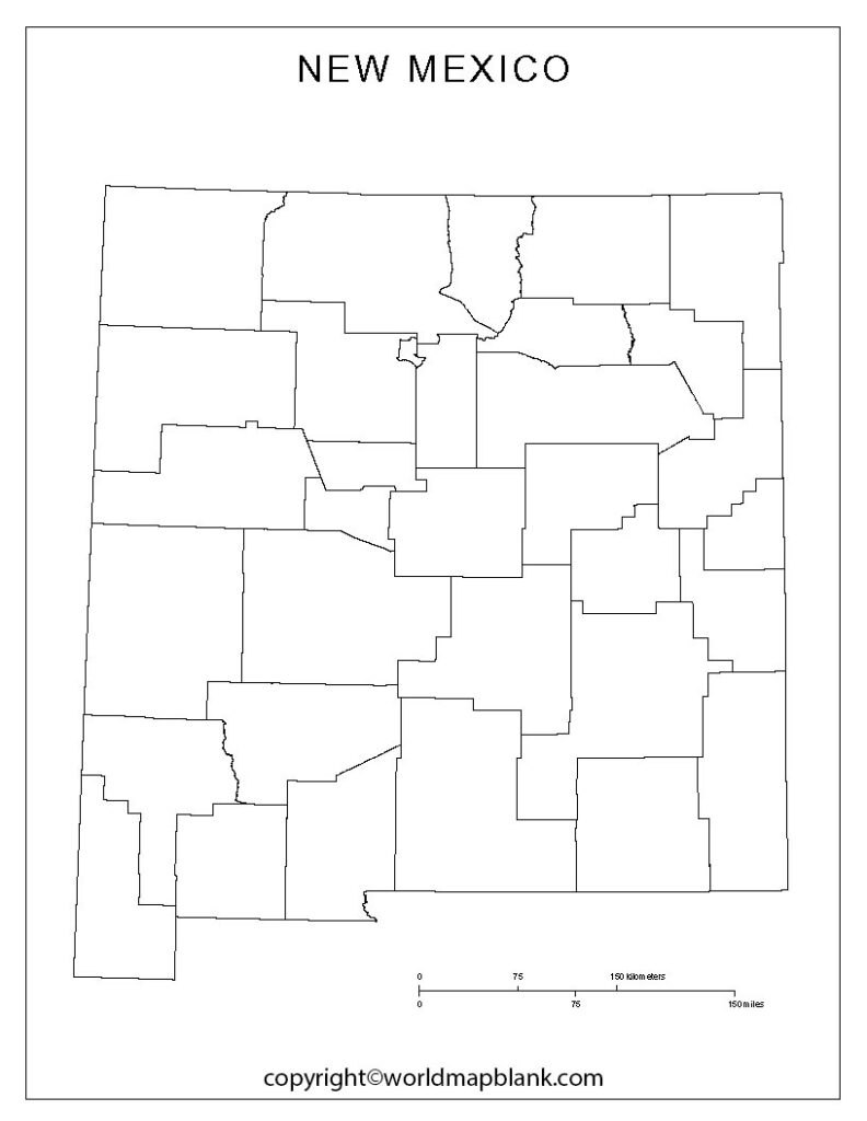 Blank New Mexico Map worksheet